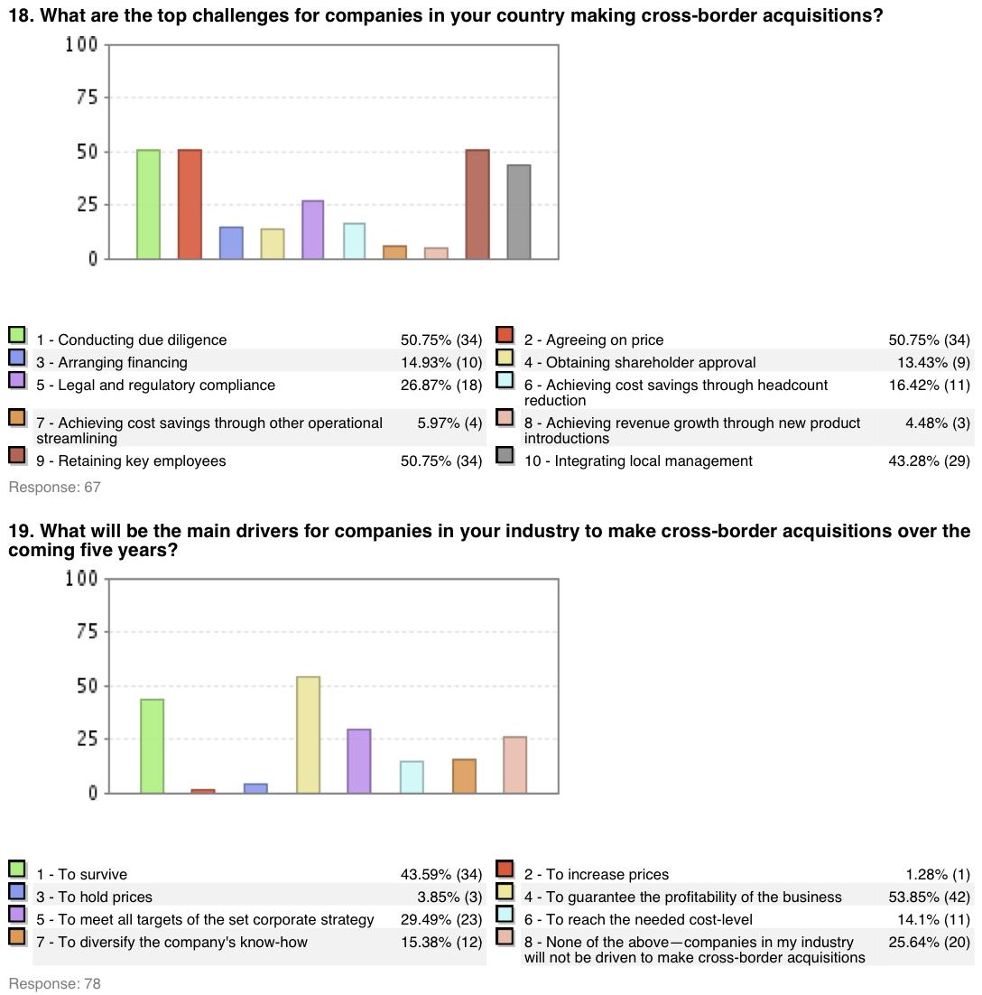 Figure 11: M&A Survey Japan 2006