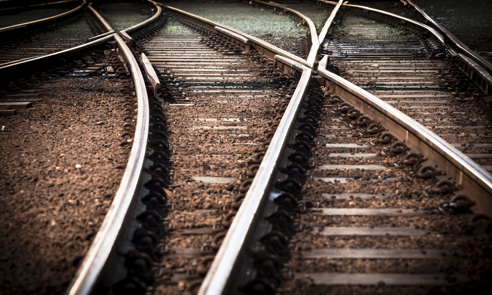 Perspectives On Merger Integration