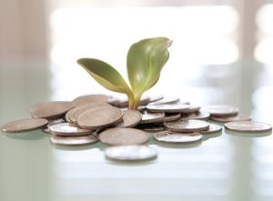 Sustainable Finance: The Risks And Opportunities That (Some) CFOs Are Overlooking