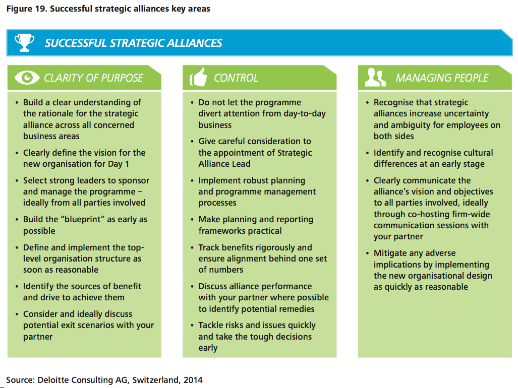 Figure 19 Successful strategic alliances key areas