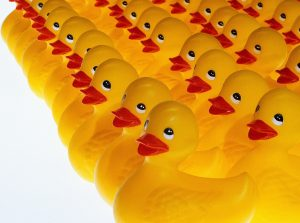Serial Acquirers: Getting Your Ducks In A Row