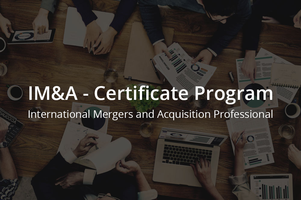 International Online Mergers and Acquisitions Certificate Program