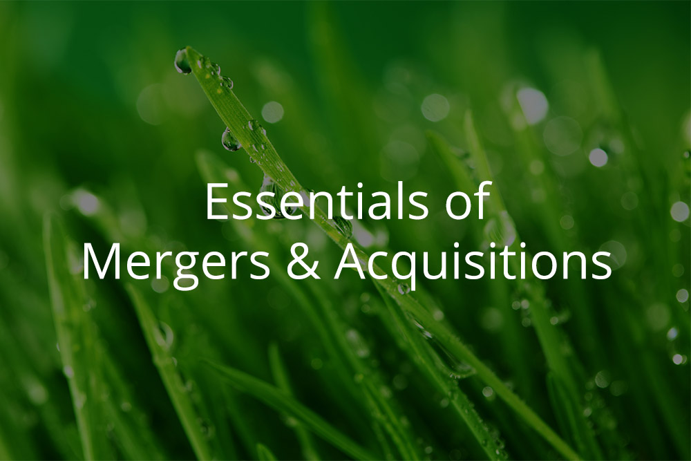 Essentials of Mergers & Acquisitions Module