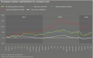 Figure 19 European market capitalization by company size
