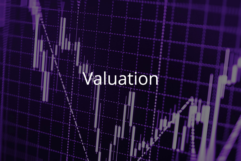 M&A Valuation Module